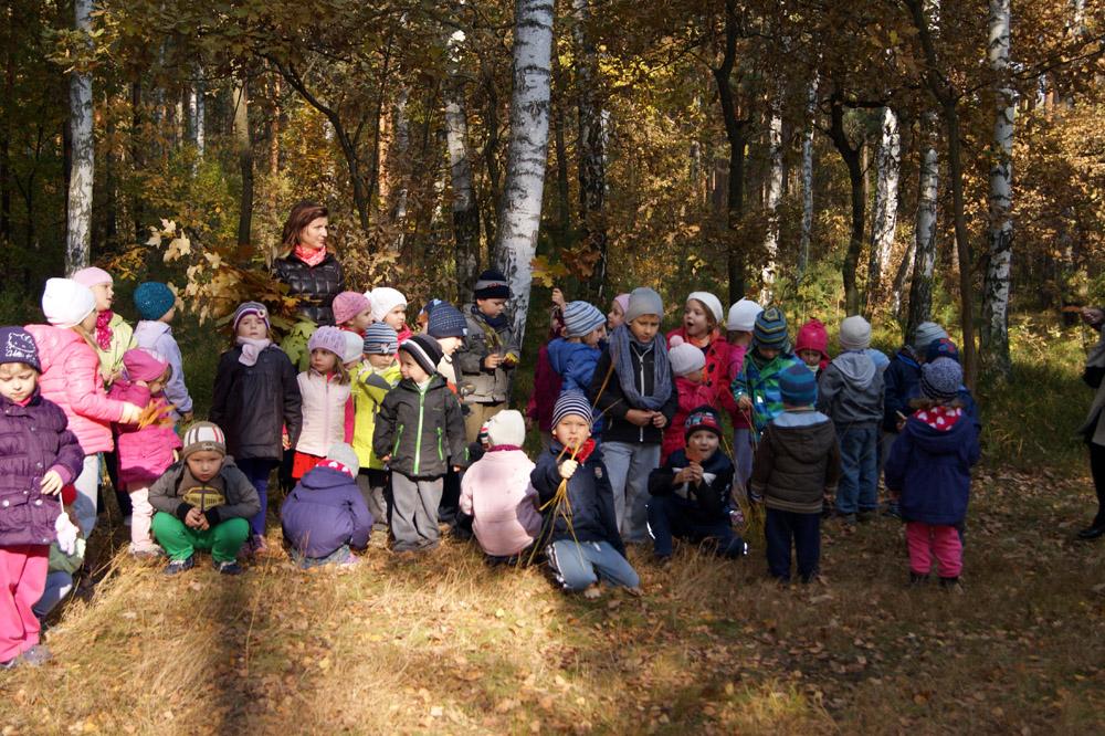 Zabezpieczony: Poszukiwanie jesieni – Smerfy i Gąsieniczki