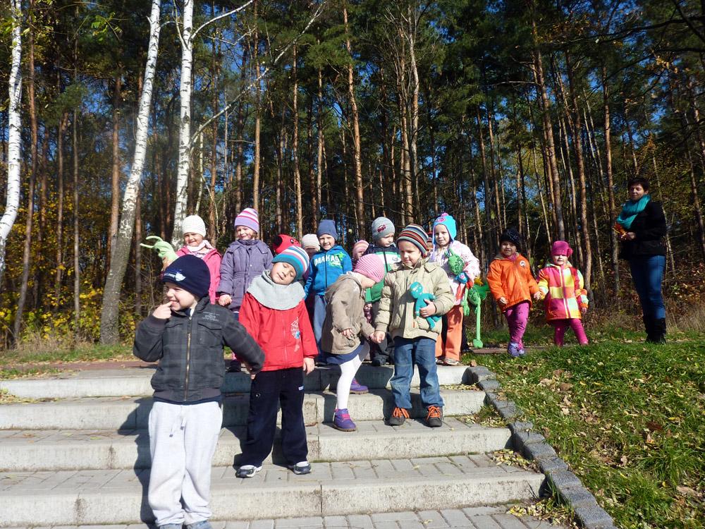 """Zabezpieczony: """"Rumianki"""" pokazują las swoim """"Ufoludkom"""""""