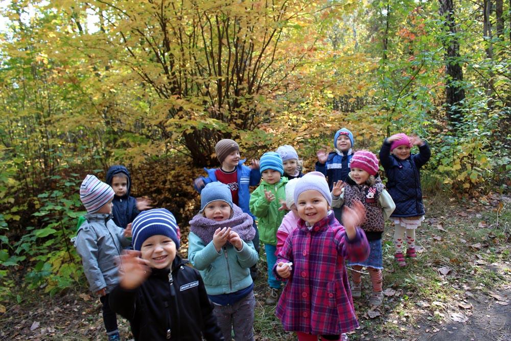 Szafirki na wycieczce w lesie