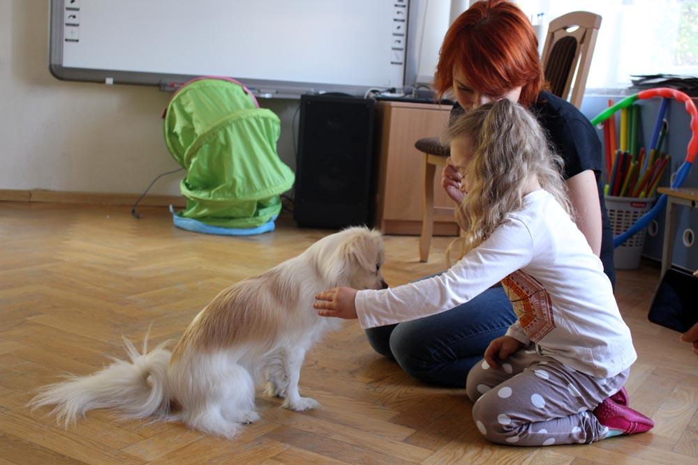 """""""Bezdomność czyli o odpowiedzialnym i empatycznym podejściu do zwierząt – spotkanie z wolontariuszami i ich podopiecznymi"""