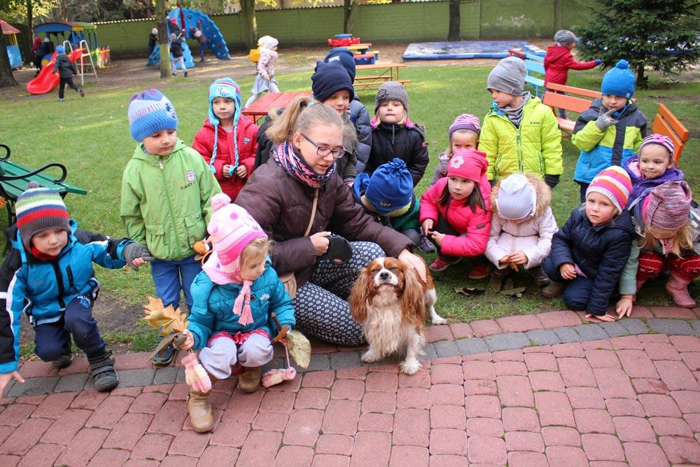 W ramach akcji Spotkanie z moim pupilem zajęcia z psem Michała (gr. Szafirki)