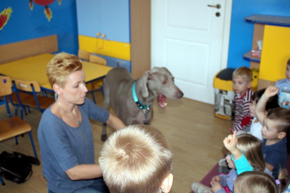 Spotkanie z psem Ninki w Szafirkach