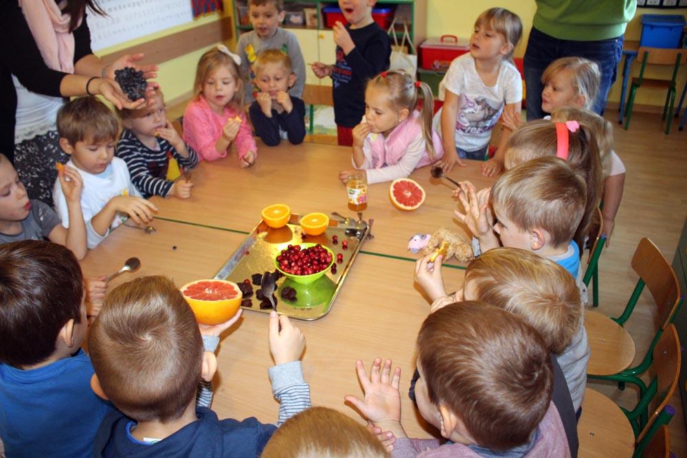 Szafirki poznają owoce i smaki podczas nauki języka angielskiego